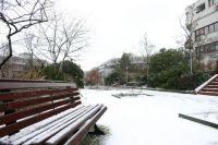 rollbergbank_winter09